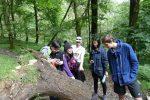 Penny tree camping