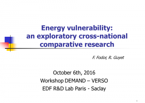 Energy vulnerability: an exploratory cross-national comparative research Ferenc Fodor and Rachel Guyet
